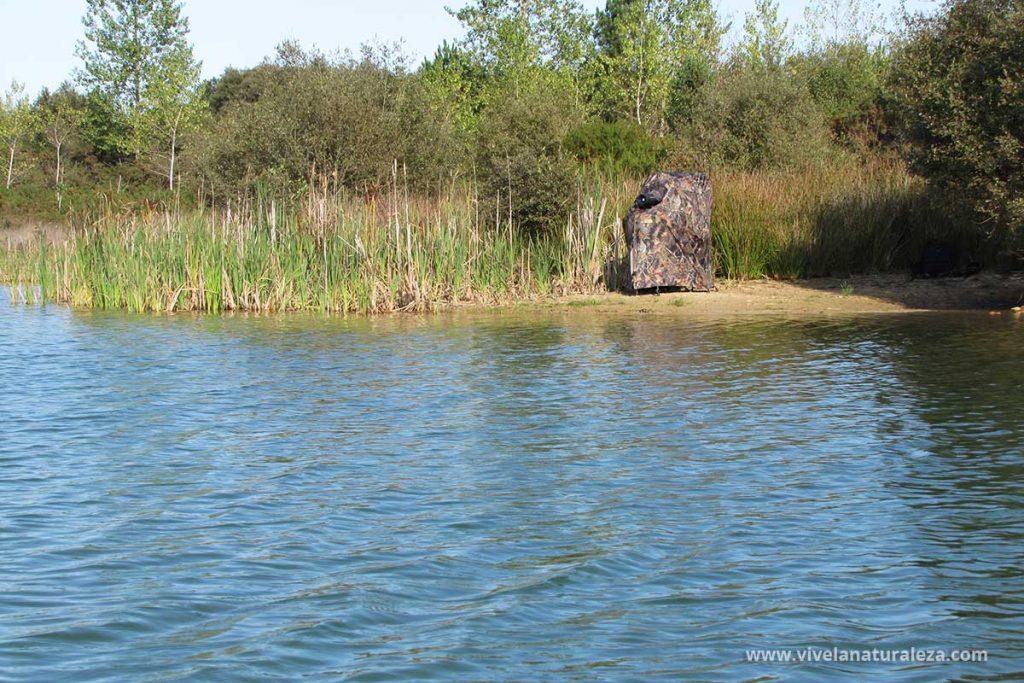 Escondite para fotografiar aves en un lago