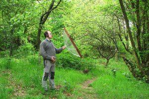 Grabar sonidos de la naturaleza: cantos de aves, voces de anfibios o mamíferos, es algo que está al alcance de cualquier naturalista o ecólogo que tanga una vieja grabadora de audio