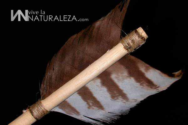 Como poner las plumas del tión a las flechas