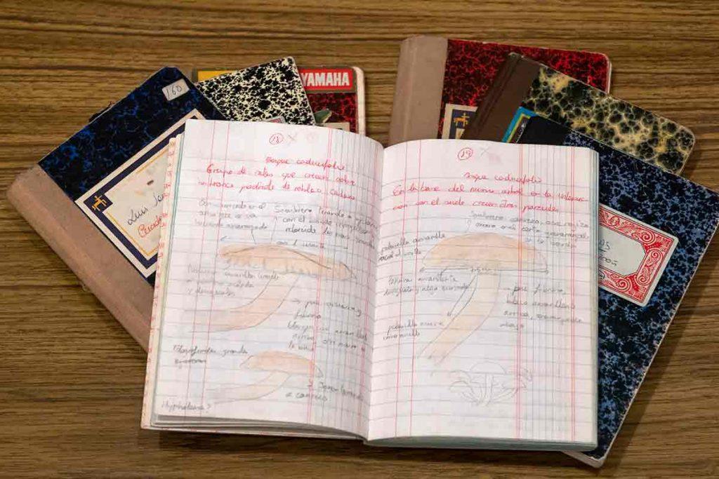 Montón de cuadernos de campo