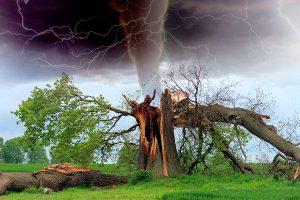 Los desastres naturales son un riesgo que nos puede sobrevenir en cualquier momento y lugar. Estar preparados y saber cómo enfrentarse a ellos es la mejor manera de sobrevivir