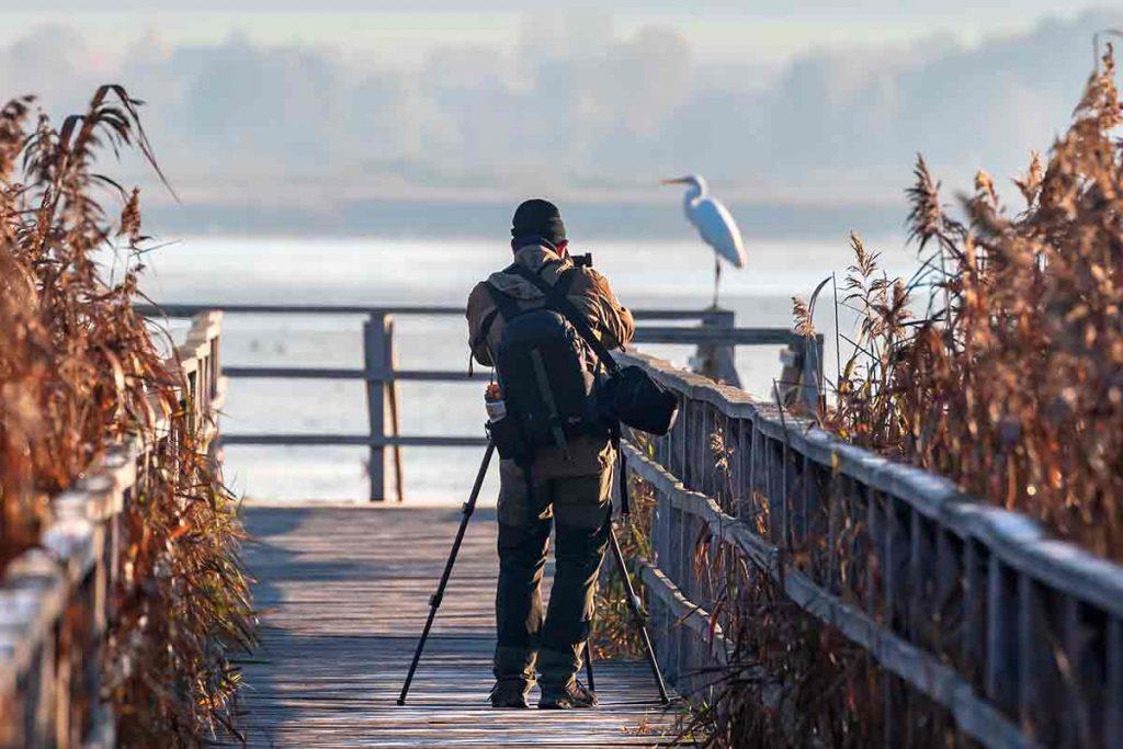 Haz las mejores fotografías de naturaleza con nuestro curso de fotografía enfocado a los fotógrafos de naturaleza
