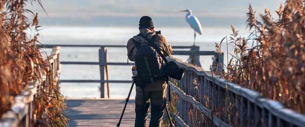 Un fotógrafo de naturaleza trabajando