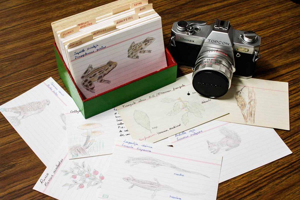 La organización, selección y clasificación del trabajo científico de campo se lleva a cabo en casa o en el laboratorio de ciencias