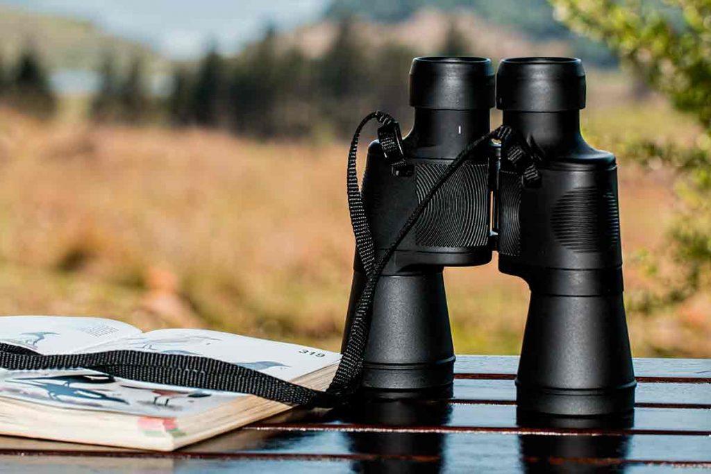 Antes o después un naturalista decide comprar unos prismáticos, puesto que le acercan a animales huidizos e imposibles de observar de otro modo.