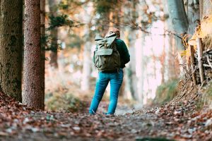 Cuando descubrimos que nos hemos perdido, normalmente estamos cerca del camino correcto. Por eso no es importante comenzar a vagar sin rumbo y sin un plan. Si lo hacemos, sólo conseguiremos desorientarnos más y empeorar nuestra situación