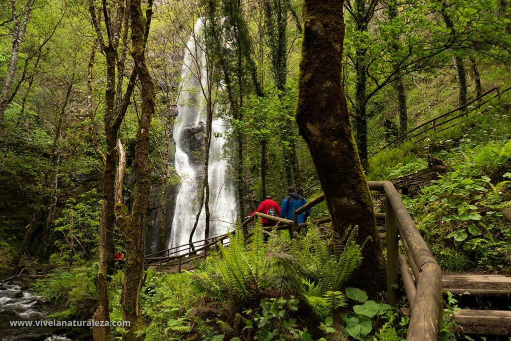 Esta espectacular cascada se encuentra en un bosque natural y privilegiado. Ideal para una visita o una ruta de un día