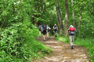 Senderistas en la ruta del Camino de Santiago
