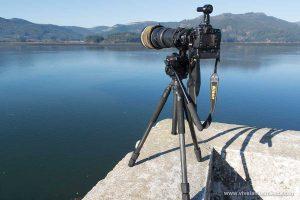Objetivos fotográficos para fotografía de aves, fauna, flora, naturaleza