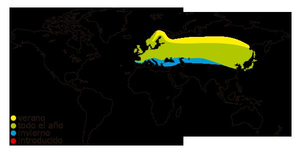 Mapa de distribucion mundial del camachuelo comun (Pyrrhula pyrrhula)