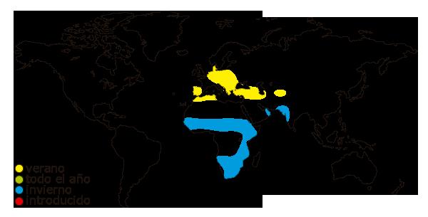 Mapa de distribucion mundial de la cigüeña (Ciconia ciconia)