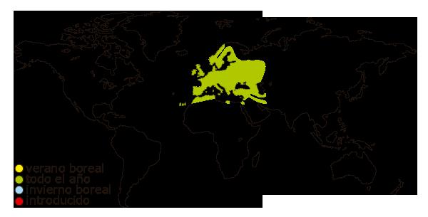 Mapa de distribución mundial del herrerillo comun (Cyanistes caeruleus)