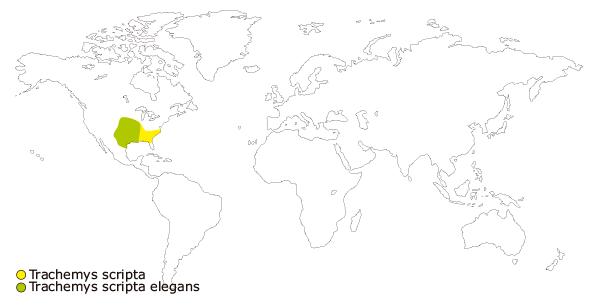 Mapa de distribucion mundial de la tortuga de florida o galapgo de orejas rojas (Trachemys scripta elegans)