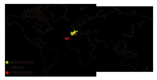 Mapa de distribucion mundial de la rana comun