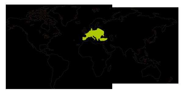 Mapa de distribucion mundial de la rana de san antonio (Hyla arborea)