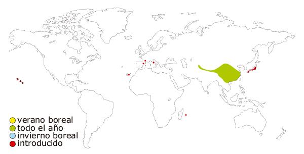 Mapa de distribucion mundial del Ruiseñor de japon o ruiseñor japones (Leiothrix lutea)