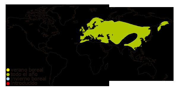 Mapa de distribucion mundial de la urraca comun (Pica pica)