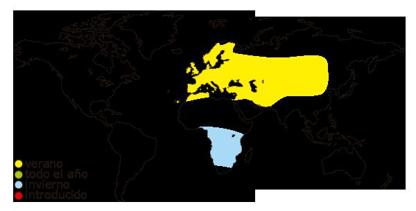 Mapa de distribución mundial del vencejo comun (Apus apus)