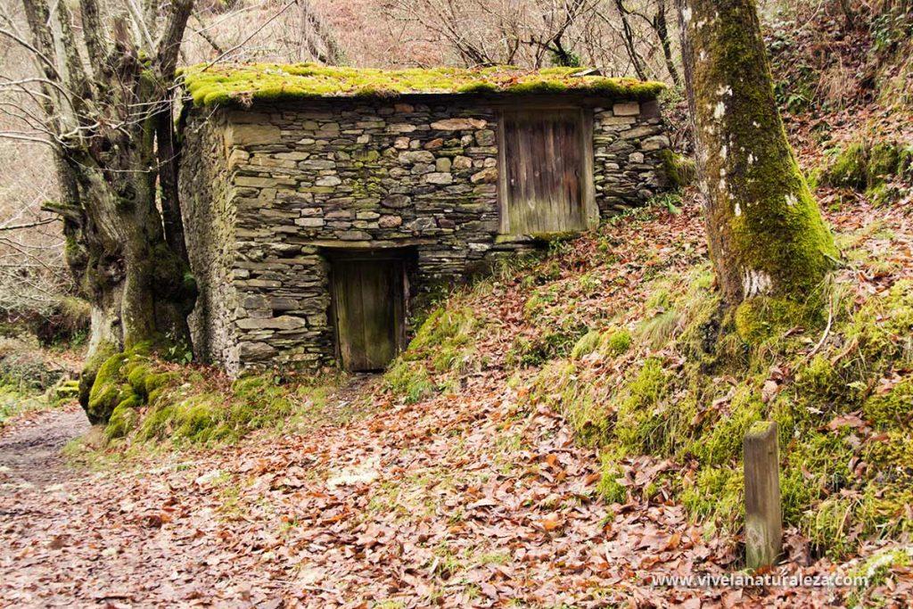 Construccion tradicional de piedra para secar castañas