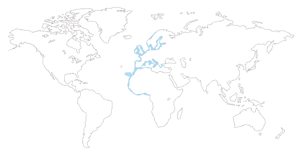 Mapa de distribución mundial de la estrella espinosa comun  (Marthasterias glacialis)