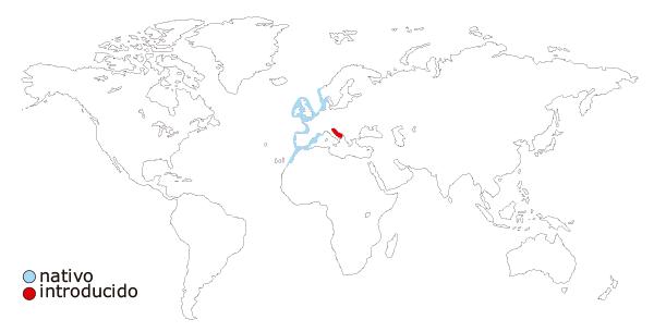 Mapa de distribución mundial de la nécora (Necora puber)