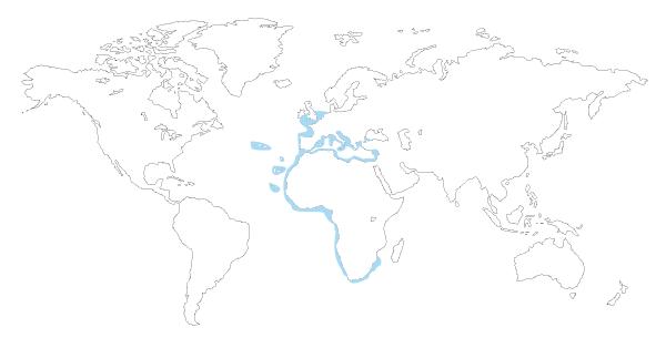 Mapa de distribución del pez cabrilla (serranus cabrilla)