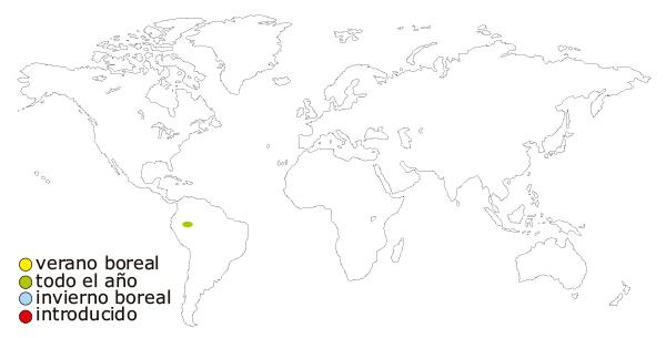 Mapa de ditribución mundial del pez  tetra neon (Paracheirodon innesi)